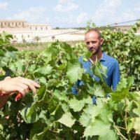Assuli, da Mazara del Vallo ad Enolia 2020: un vignaiolo dalla Sicilia